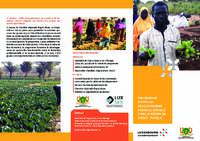 NIGER - PROGRAMME D'APPUI AU DÉVELOPPEMENT AGRICOLE DURABLE DANS LA RÉGION DE DOSSO - PHASE II
